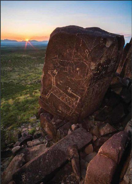 New Mexico Petroglyphs
