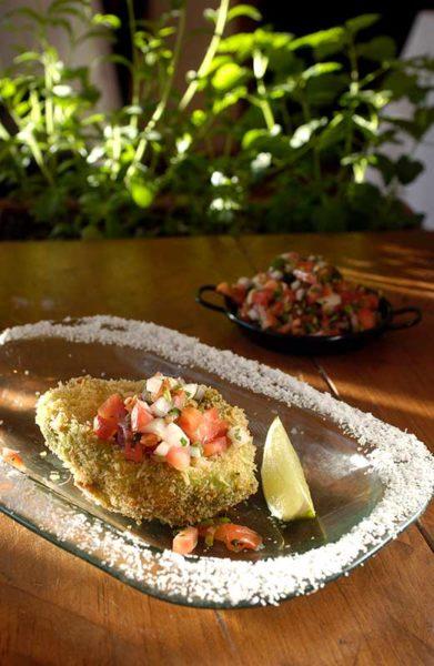 Ceviche New Mexico Cuisine