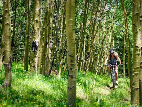 Mountain Biking Taos New Mexico